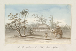 'A Bungalow in the Park, Barrackpore'